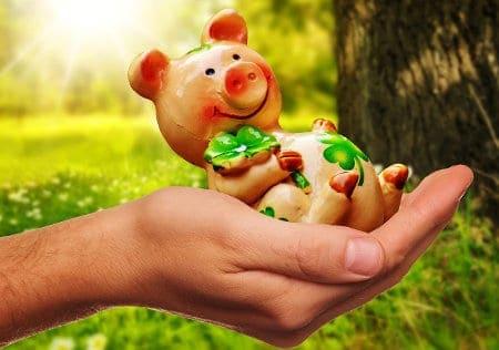 Figurka świnka w dłoni kobiety