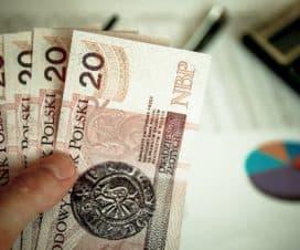 Mężczyzna trzyma w dłoni banknoty dwudziesto złotowe