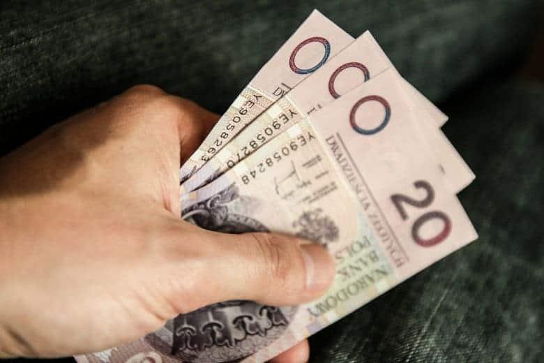 Mężczyzna trzyma w dłoni banknoty 20 zł